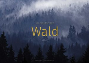 Waldkalender - Im deutschen Wald